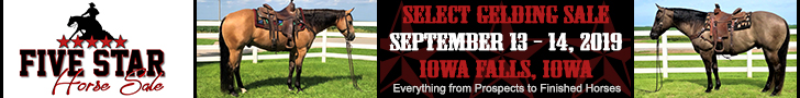 Five Star Horse Sale - September 13 - 14, 2019