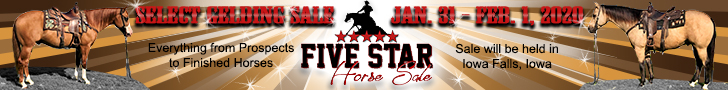5 Star Horse Sale - Select Gelding Sale - Jan. 31 - Feb 1, 2020