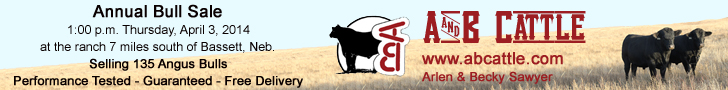 A And B Cattle Bull Sale