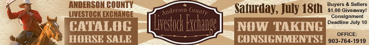 Anderson County Livestock Exchange - Catalog Horse Sale