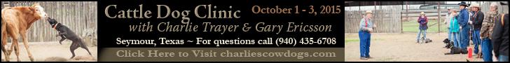 Charlie's Cowdog Clinic