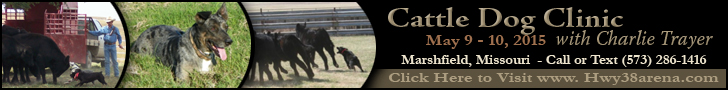 Kenser Creek Ranch Cattle Dog Clinic