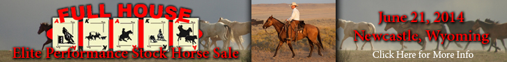 Full House Horse Sale
