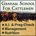 Graham School For Cattlemen - Learn How to A.I. Cattle and more!