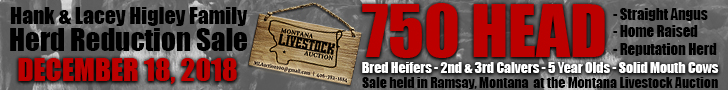Higley Herd Reduction Sale - December 18 - Ramsay, Montana