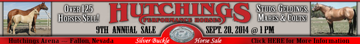 Hutchings Performance Horse Sale