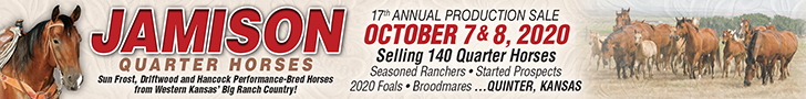 Jamison Quarter Horses 17th Annual Production Sale