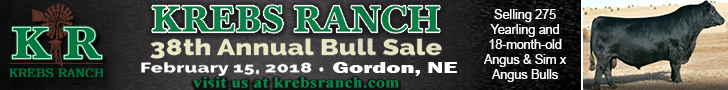 Krebs Ranch Bull Sale - February 15, 2018