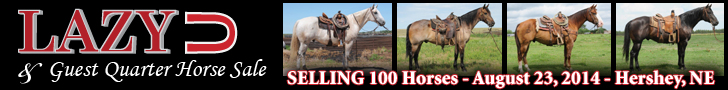 Lazy U Quarter Horses Horse Sale