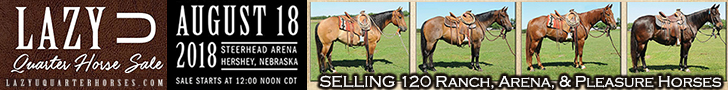 Lazy U Quarter Horse Sale