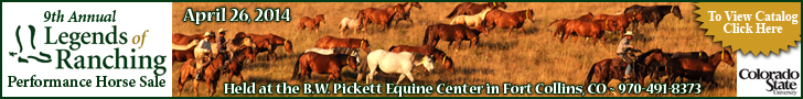 Legends of Ranching Performance Horse Sale