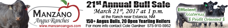 2017 Manzano Angus Bull Sale