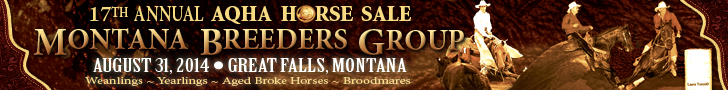 Montana Breeders Group Horse Sale
