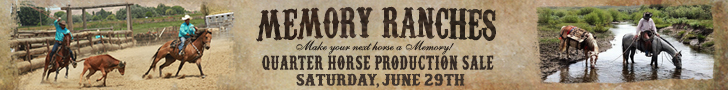 Memory Ranches Quarter Horse Production Sale - June 29, 2019