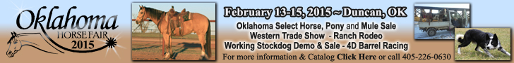 Oklahoma Horse Fair - Horse Sale - Ranch Rodeo - Stockdog Demo & Sale