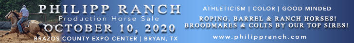 Philipp Ranch Production Horse Sale