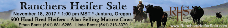 Ranchers Heifer Sale
