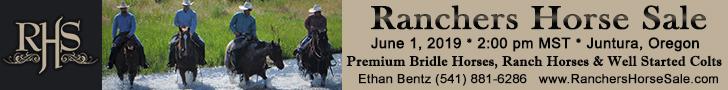 Rancher's Horse Sale