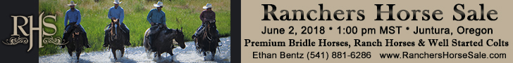 Ranchers Horse Sale