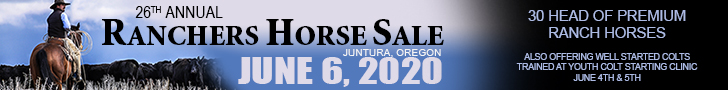 Ranchers Horse Sale - June 6, 2020