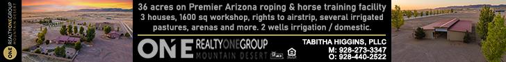 Arizona Roping and Horse Training Property