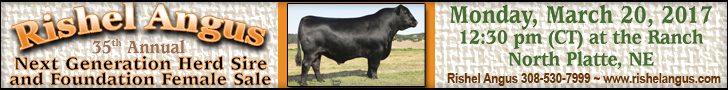 2017 Rishel Angus Bull & Female Sale