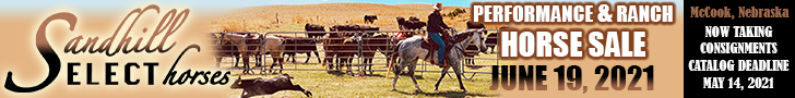 Sandhill Select Horses - Performance & Ranch Horse Sale