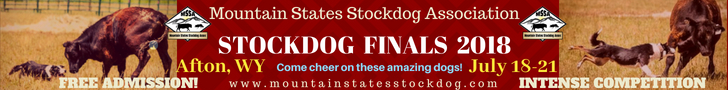 Mountain States Stock Dog Association National Finals