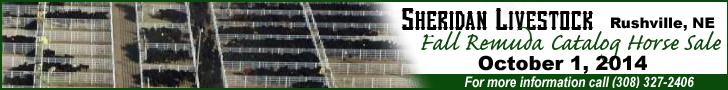 Sheridan Livestock Fall Remuda Catalog Horse Sale