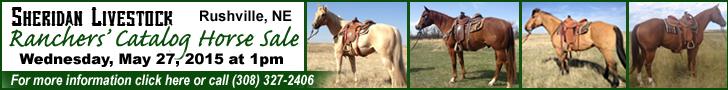Sheridan Livestock Ranchers Horse Sale