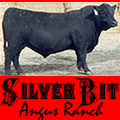Silver Bit Angus Ranch