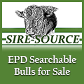Sire Source - Bulls for Sale - Searchable EPDs