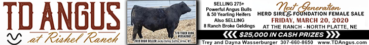 TD Angus at Rishel Ranch Next Generation Herd Sire and Female Sale