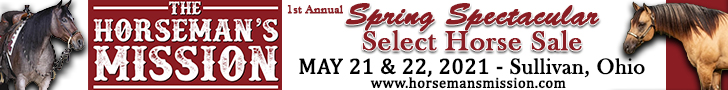 The Horseman's Mission Spring Spectacular Select Horse Sale - May 22, 2021