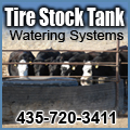 Tire Stock Tanks