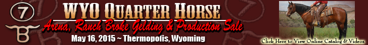 WYO Quarter Horse Production Sale
