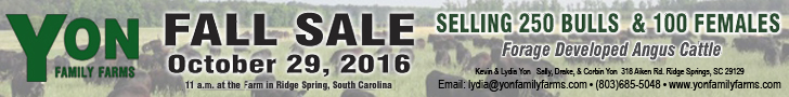 Yon Family Farms Fall Sale