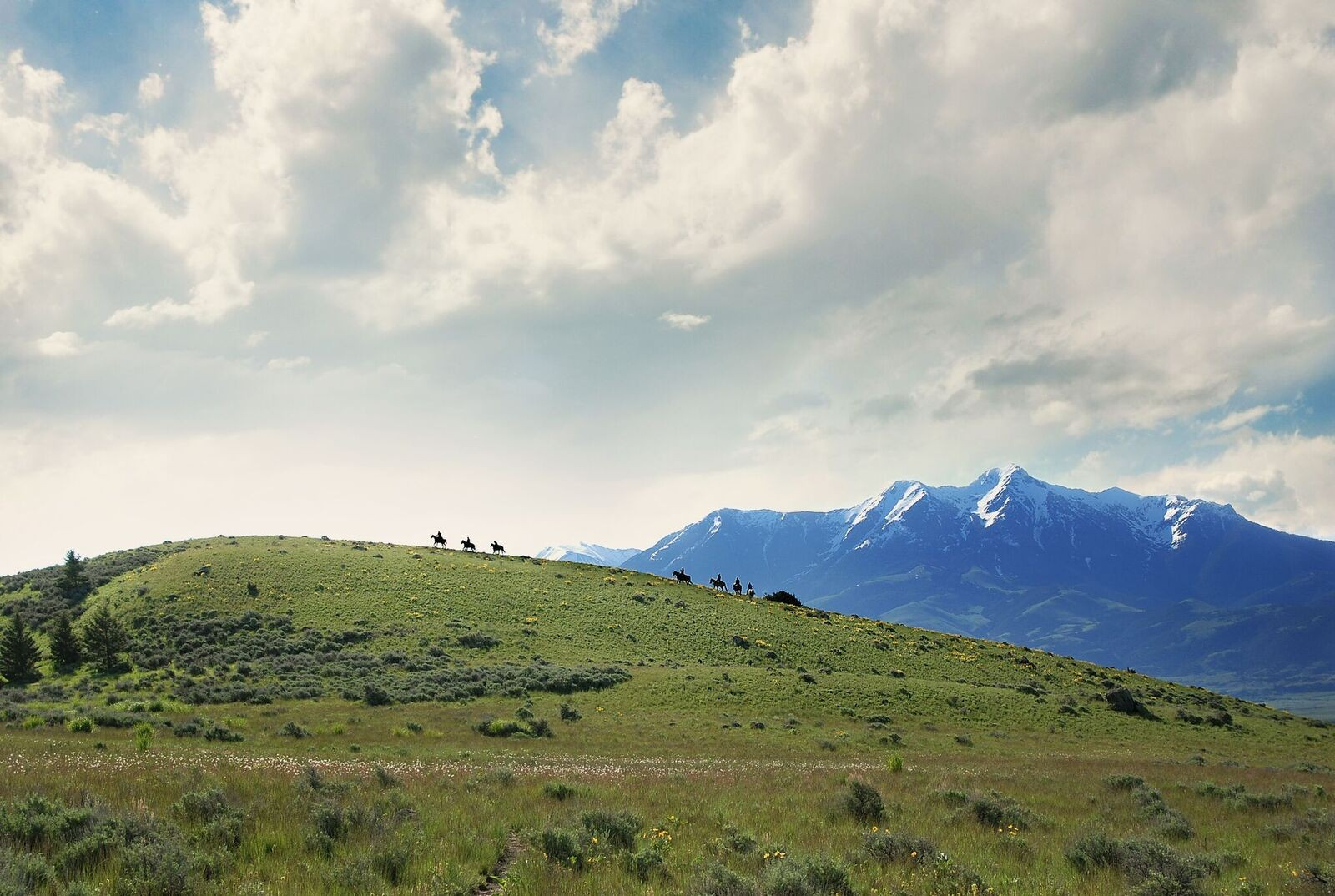 Wanted - Full-time Ranch Hand for Hay/Cattle Ranch - Montana