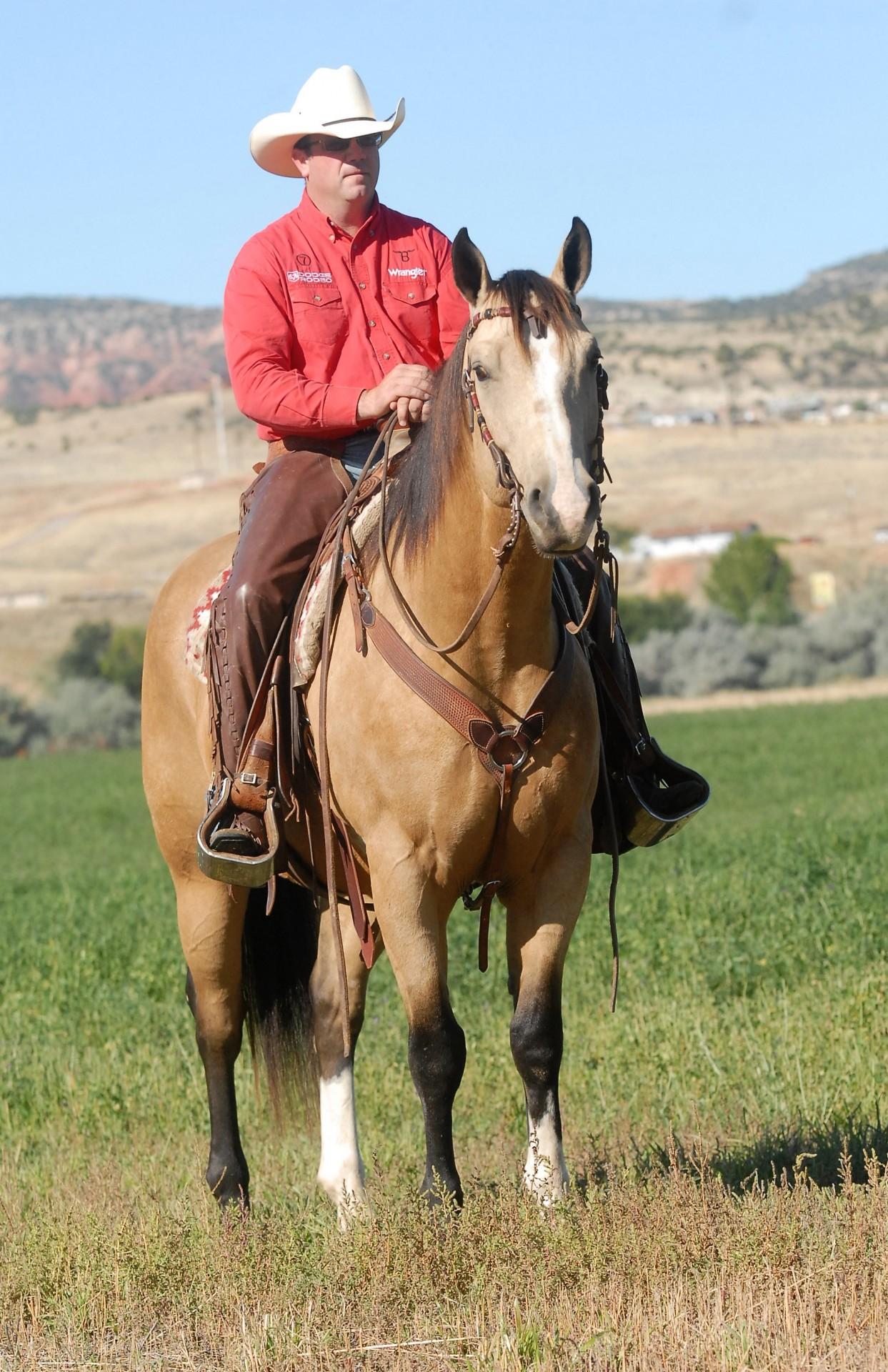 Wanted Horseman Wyo Quarter Horse Ranch Wyoming