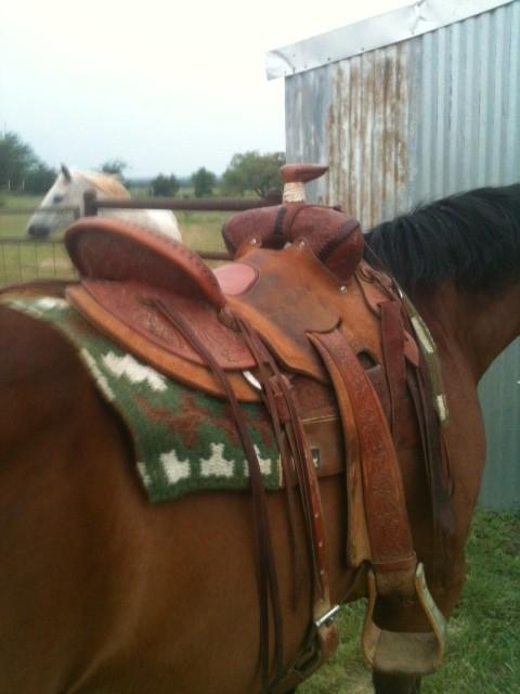 "Neil Overton 16"" Seat Rig Cowboy/Roping Saddle"