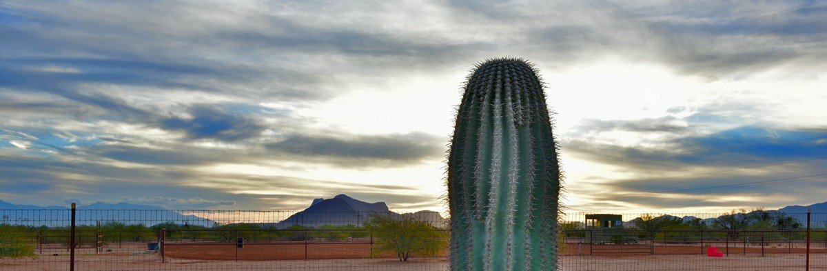 Wanted Ranch Help At Tucson Equestrian Center Arizona