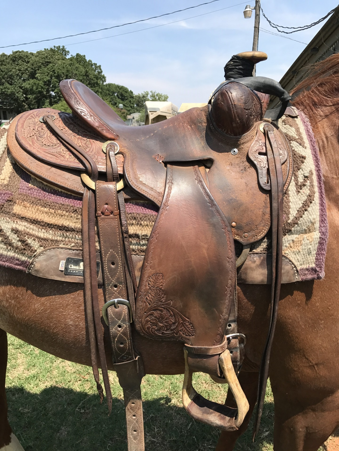 Used 15 inch Oliver Saddle with a Tucson Tree