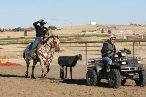 calf roping machine for sale