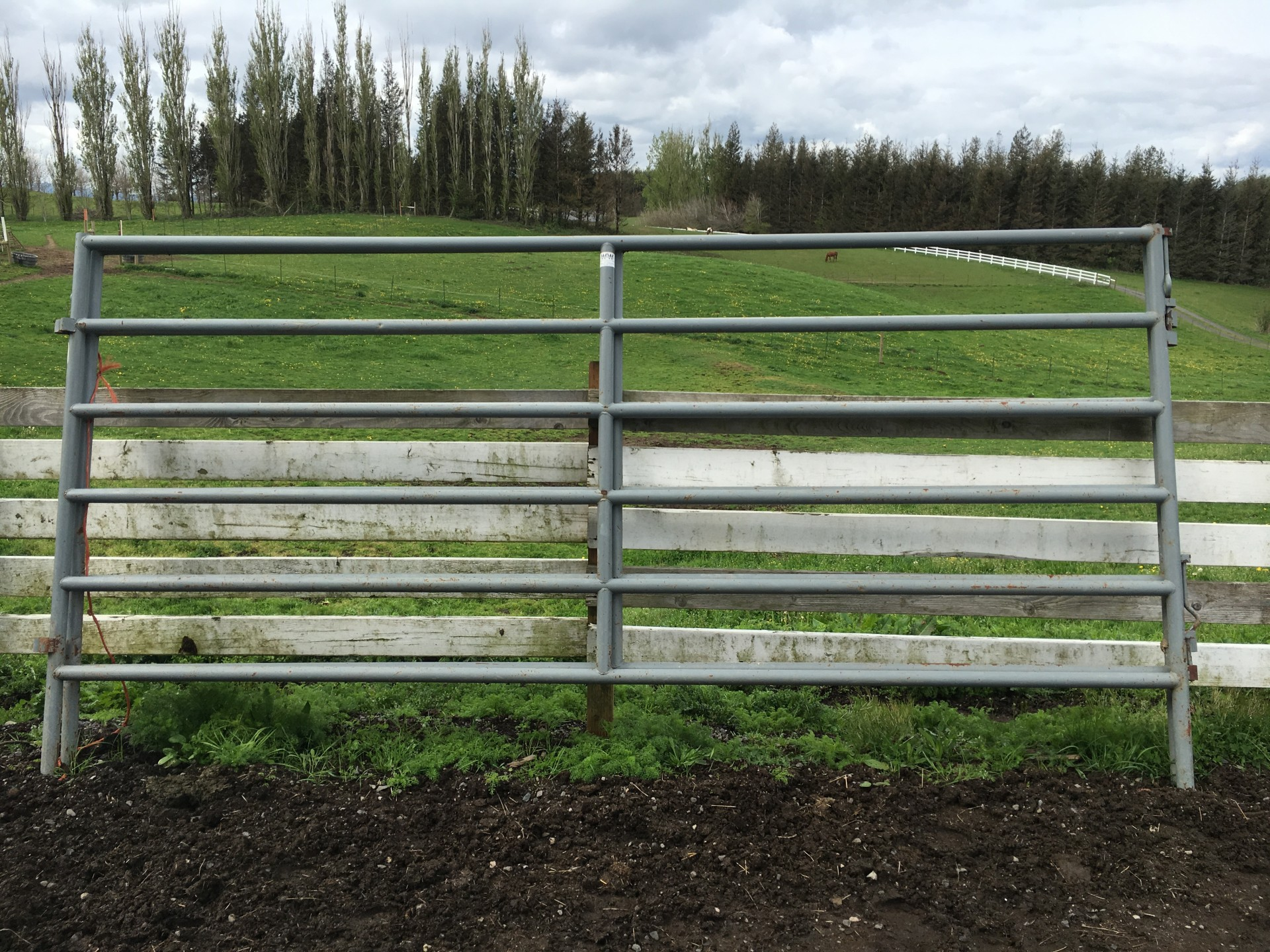Corral cattle panels and bow gates for Coastal farm and ranch ad