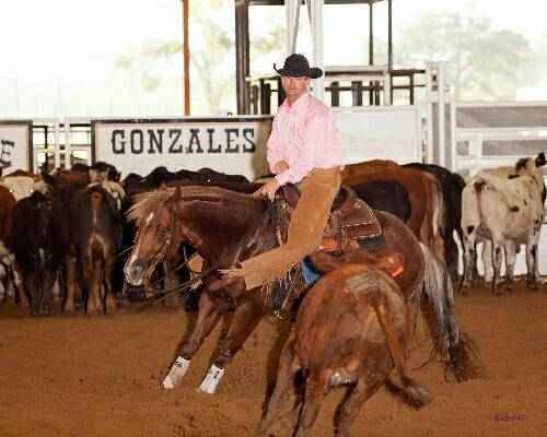 Movie horse trainers texas