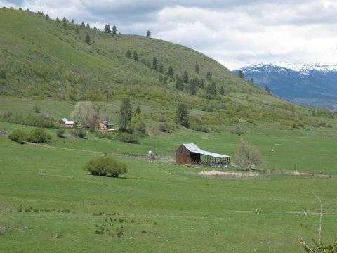 90 Head - Posy Valley - Oregon